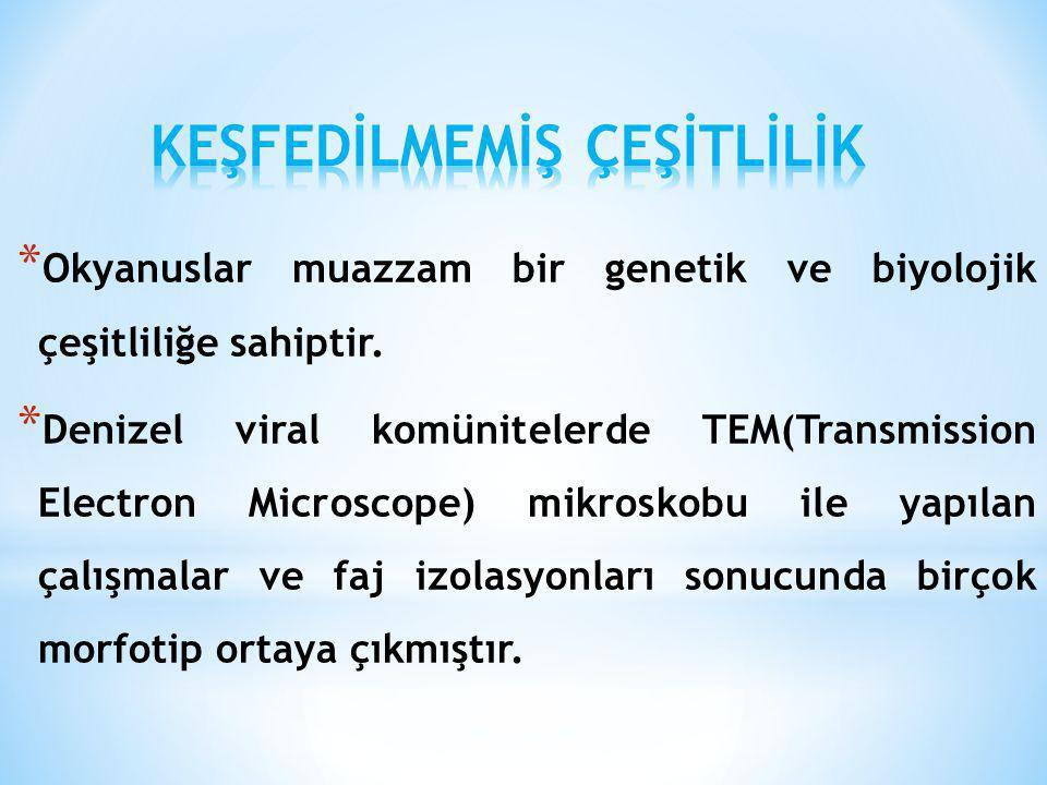* Okyanuslar muazzam bir genetik ve biyolojik çeşitliliğe sahiptir. * Denizel viral komünitelerde TEM(Transmission Electron Microscope) mikroskobu ile
