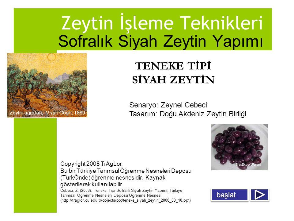 Bu öğrenme nesnesi: a.Salamura yöntemiyle teneke tipi siyah zeytin yapımı, b.Salamurasız (kuru tuz) yöntemiyle teneke tipi siyah zeytin yapımı tekniklerini anlatmaktadır.
