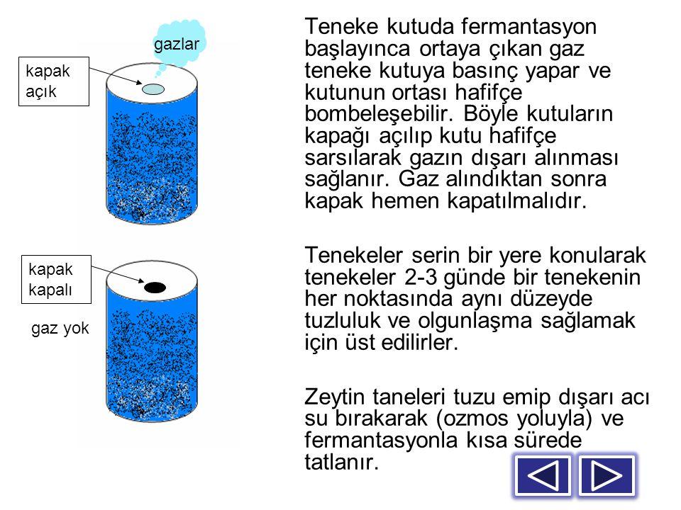 Teneke kutuda fermantasyon başlayınca ortaya çıkan gaz teneke kutuya basınç yapar ve kutunun ortası hafifçe bombeleşebilir. Böyle kutuların kapağı açı