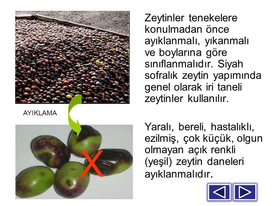 Zeytinler tenekelere konulmadan önce ayıklanmalı, yıkanmalı ve boylarına göre sınıflanmalıdır. Siyah sofralık zeytin yapımında genel olarak iri taneli