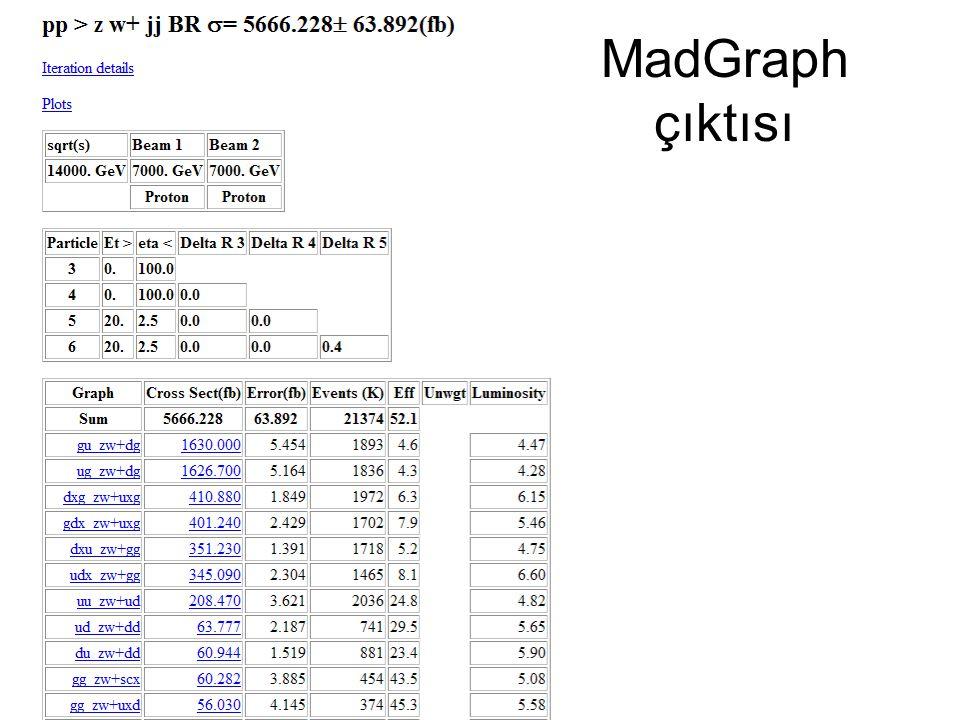10 MadGraph çıktısı
