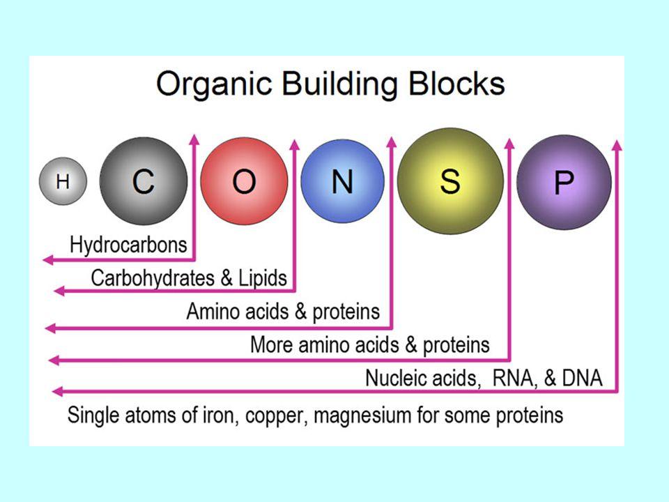 Organik halojen bileşikleri Organik halojen bileşikleri, karbon atomuna bağlı bir veya daha çok halojen içeren organik bileşiklerdir.