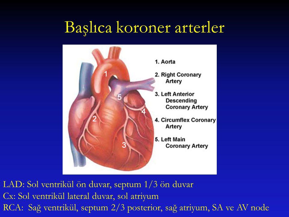 Başlıca koroner arterler LAD: Sol ventrikül ön duvar, septum 1/3 ön duvar Cx: Sol ventrikül lateral duvar, sol atriyum RCA: Sağ ventrikül, septum 2/3