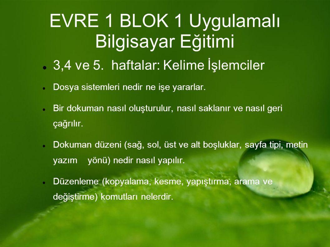EVRE 1 BLOK 1 Uygulamalı Bilgisayar Eğitimi 3,4 ve 5.