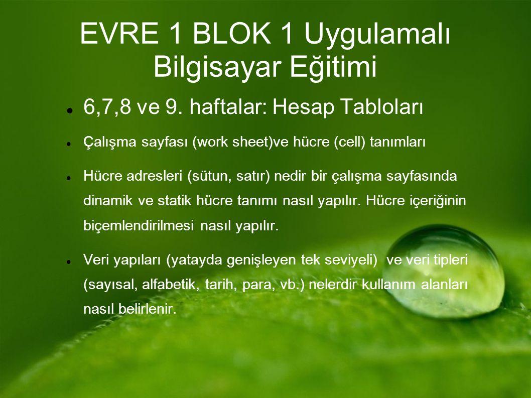 EVRE 1 BLOK 1 Uygulamalı Bilgisayar Eğitimi 6,7,8 ve 9.