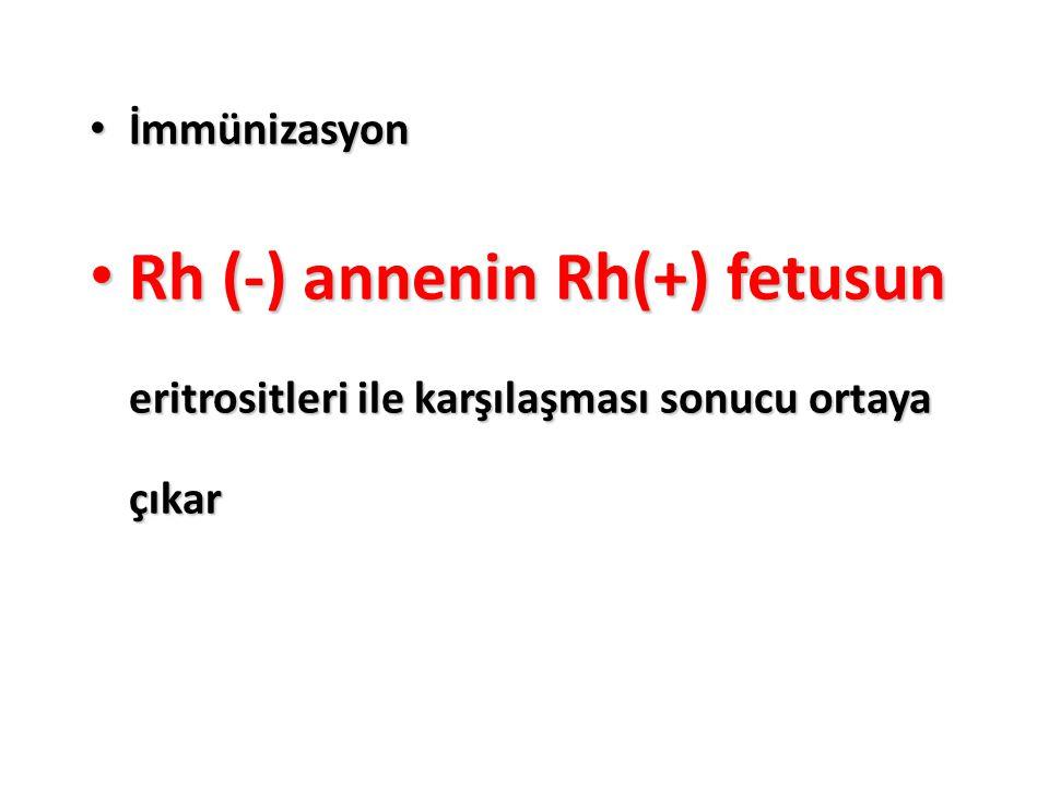 İmmünizasyon İmmünizasyon Rh (-) annenin Rh(+) fetusun eritrositleri ile karşılaşması sonucu ortaya çıkar Rh (-) annenin Rh(+) fetusun eritrositleri i