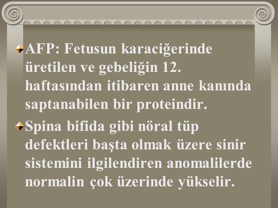 AFP: Fetusun karaciğerinde üretilen ve gebeliğin 12.
