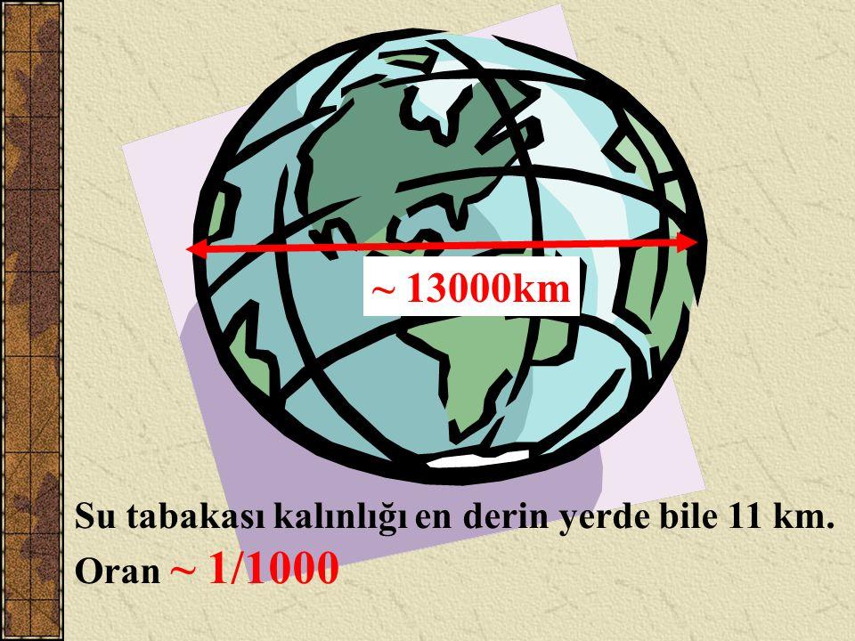 ~ 13000km Su tabakası kalınlığı en derin yerde bile 11 km. Oran ~ 1/1000