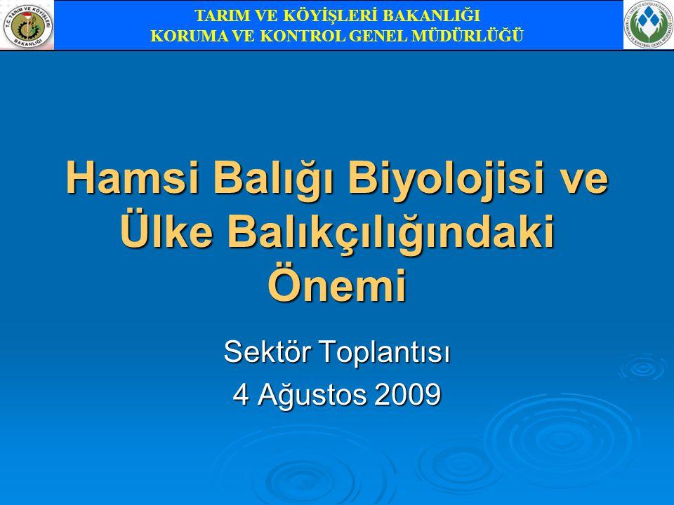 Hamsi Balığı Biyolojisi ve Ülke Balıkçılığındaki Önemi Sektör Toplantısı 4 Ağustos 2009 TARIM VE KÖYİŞLERİ BAKANLIĞI KORUMA VE KONTROL GENEL MÜDÜRLÜĞÜ