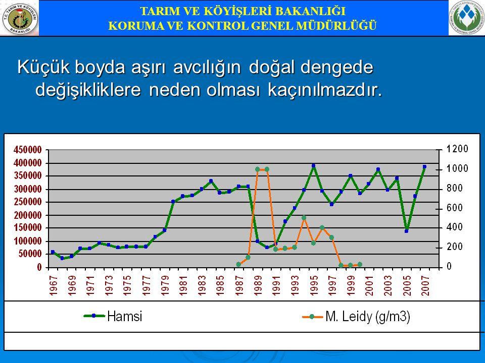 Avlanan hamsinin yıllara göre balık unu sanayisinde değerlendirme oranları TARIM VE KÖYİŞLERİ BAKANLIĞI KORUMA VE KONTROL GENEL MÜDÜRLÜĞÜ