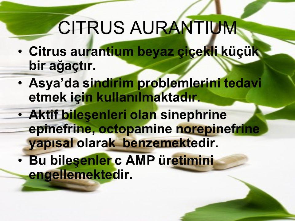 CITRUS AURANTIUM Citrus aurantium beyaz çiçekli küçük bir ağaçtır. Asya'da sindirim problemlerini tedavi etmek için kullanılmaktadır. Aktif bileşenler