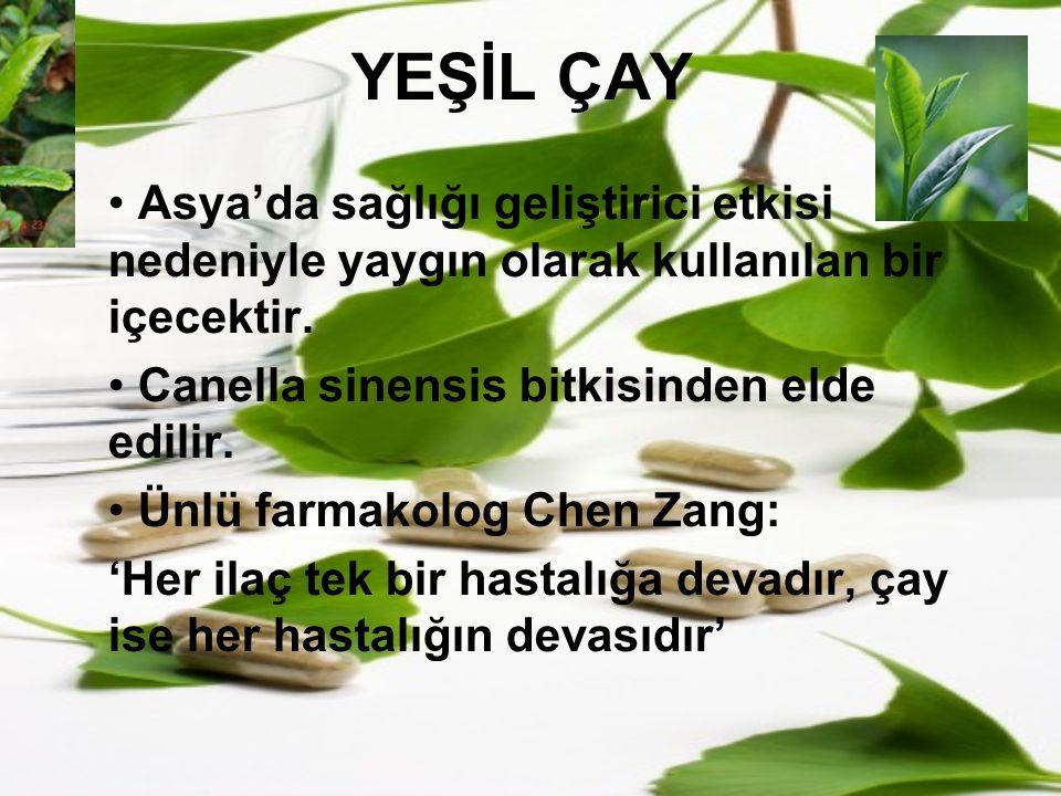 YEŞİL ÇAY Asya'da sağlığı geliştirici etkisi nedeniyle yaygın olarak kullanılan bir içecektir. Canella sinensis bitkisinden elde edilir. Ünlü farmakol