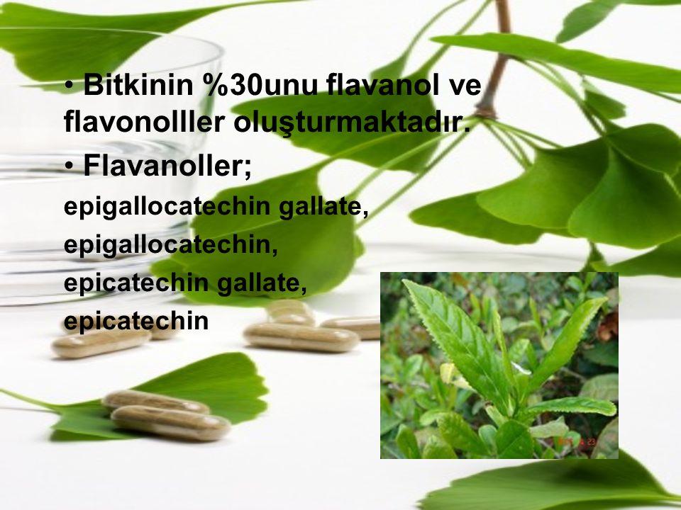 Bitkinin %30unu flavanol ve flavonolller oluşturmaktadır. Flavanoller; epigallocatechin gallate, epigallocatechin, epicatechin gallate, epicatechin