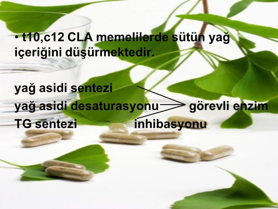 t10,c12 CLA memelilerde sütün yağ içeriğini düşürmektedir. yağ asidi sentezi yağ asidi desaturasyonu görevli enzim TG sentezi inhibasyonu