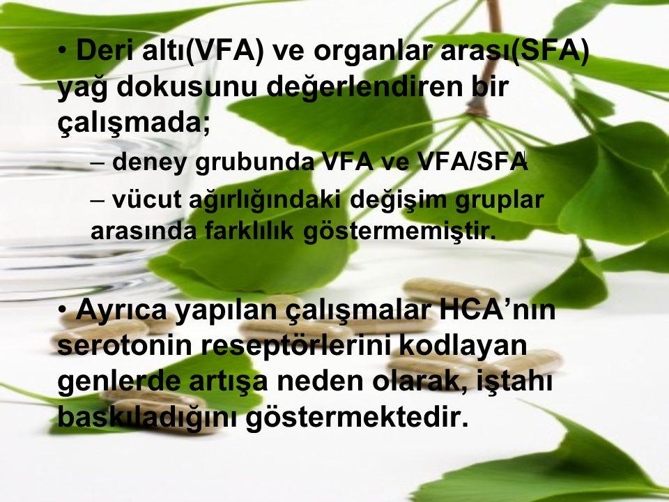 Deri altı(VFA) ve organlar arası(SFA) yağ dokusunu değerlendiren bir çalışmada; – deney grubunda VFA ve VFA/SFA – vücut ağırlığındaki değişim gruplar
