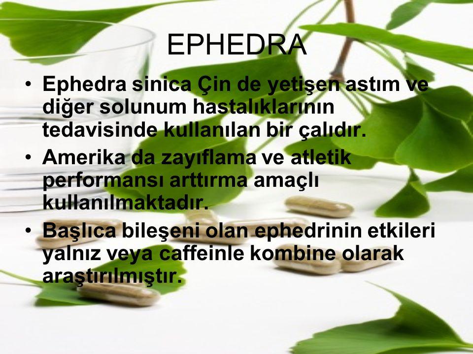 EPHEDRA Ephedra sinica Çin de yetişen astım ve diğer solunum hastalıklarının tedavisinde kullanılan bir çalıdır. Amerika da zayıflama ve atletik perfo