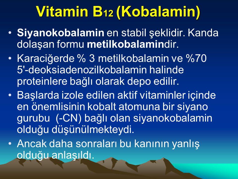 Vitamin B 12 (Kobalamin) Siyanokobalamin en stabil şeklidir.
