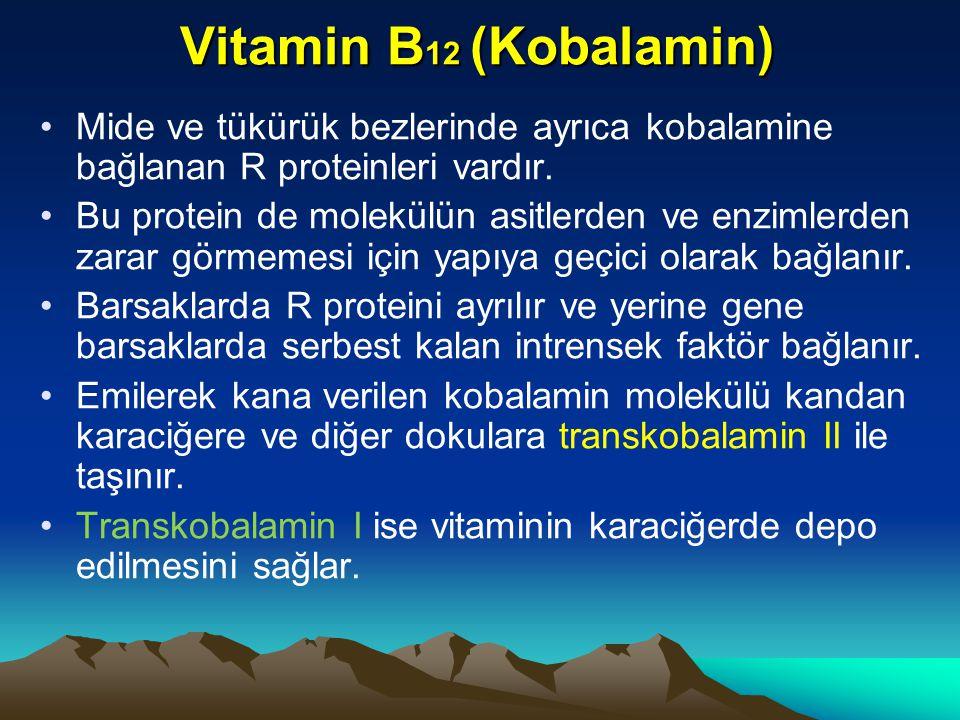 Vitamin B 12 (Kobalamin) Mide ve tükürük bezlerinde ayrıca kobalamine bağlanan R proteinleri vardır.