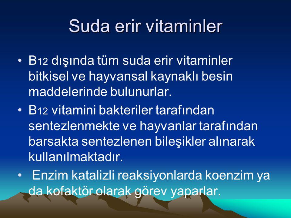 Suda erir vitaminler B 12 dışında tüm suda erir vitaminler bitkisel ve hayvansal kaynaklı besin maddelerinde bulunurlar.