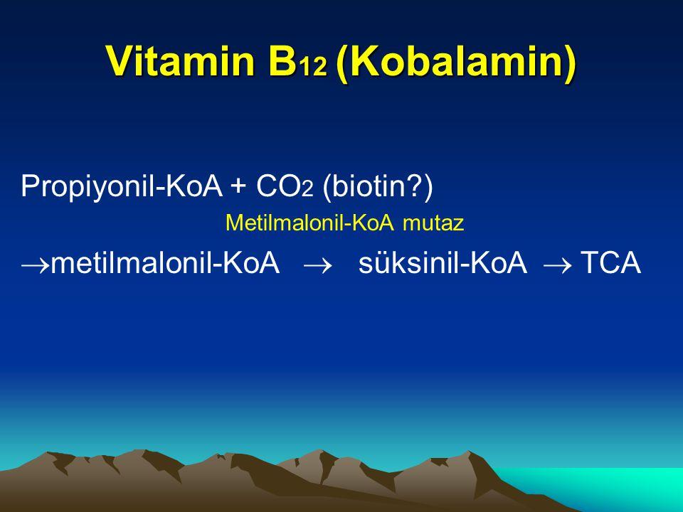 Vitamin B 12 (Kobalamin) Propiyonil-KoA + CO 2 (biotin?) Metilmalonil-KoA mutaz  metilmalonil-KoA  süksinil-KoA  TCA