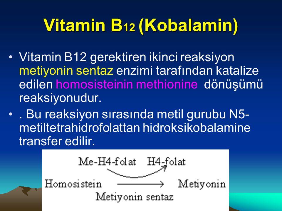 Vitamin B 12 (Kobalamin) Vitamin B12 gerektiren ikinci reaksiyon metiyonin sentaz enzimi tarafından katalize edilen homosisteinin methionine dönüşümü reaksiyonudur..