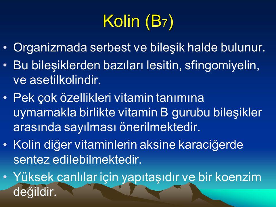 Kolin (B 7 ) Organizmada serbest ve bileşik halde bulunur.