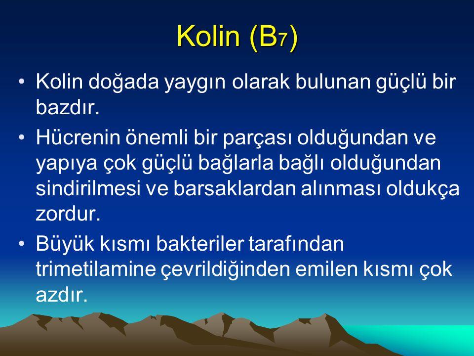 Kolin (B 7 ) Kolin doğada yaygın olarak bulunan güçlü bir bazdır.