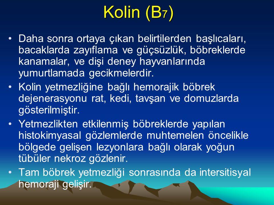 Kolin (B 7 ) Daha sonra ortaya çıkan belirtilerden başlıcaları, bacaklarda zayıflama ve güçsüzlük, böbreklerde kanamalar, ve dişi deney hayvanlarında yumurtlamada gecikmelerdir.