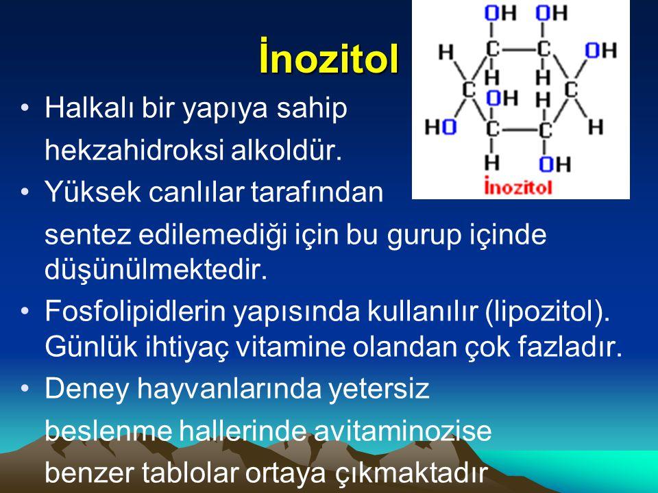 İnozitol Halkalı bir yapıya sahip hekzahidroksi alkoldür.
