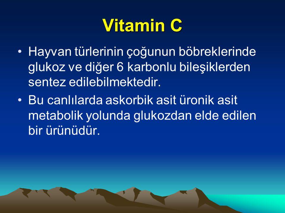 Vitamin C Hayvan türlerinin çoğunun böbreklerinde glukoz ve diğer 6 karbonlu bileşiklerden sentez edilebilmektedir.