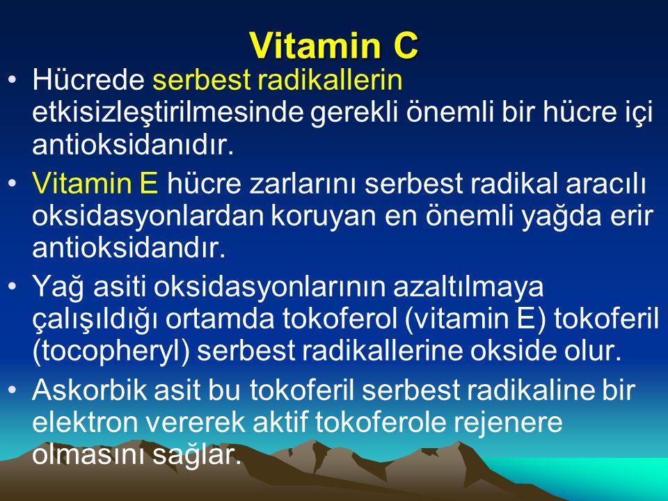 Vitamin C Hücrede serbest radikallerin etkisizleştirilmesinde gerekli önemli bir hücre içi antioksidanıdır.