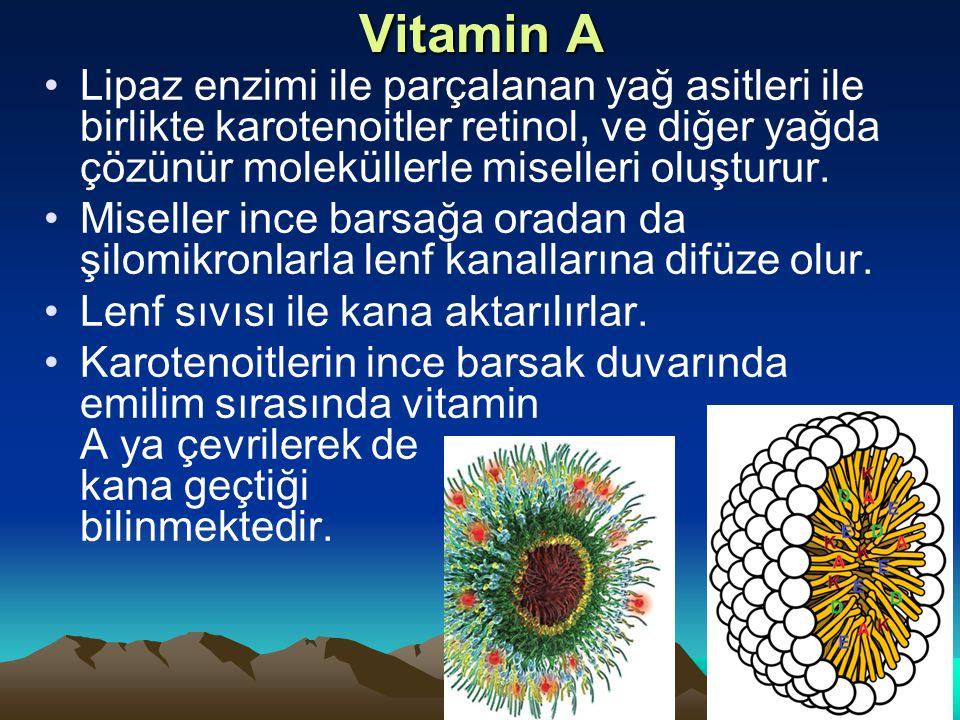 Vitamin A Lipaz enzimi ile parçalanan yağ asitleri ile birlikte karotenoitler retinol, ve diğer yağda çözünür moleküllerle miselleri oluşturur.
