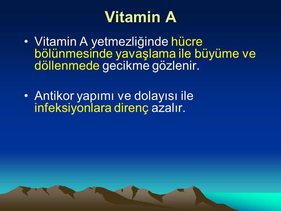 Vitamin A Vitamin A yetmezliğinde hücre bölünmesinde yavaşlama ile büyüme ve döllenmede gecikme gözlenir.