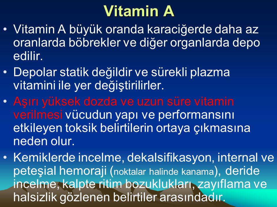 Vitamin A Vitamin A büyük oranda karaciğerde daha az oranlarda böbrekler ve diğer organlarda depo edilir.