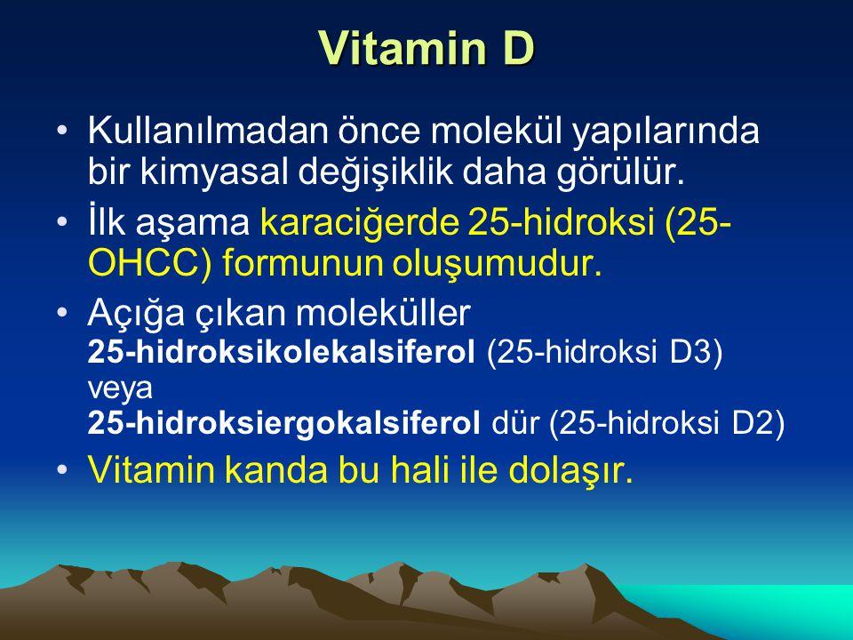 Vitamin D Kullanılmadan önce molekül yapılarında bir kimyasal değişiklik daha görülür.