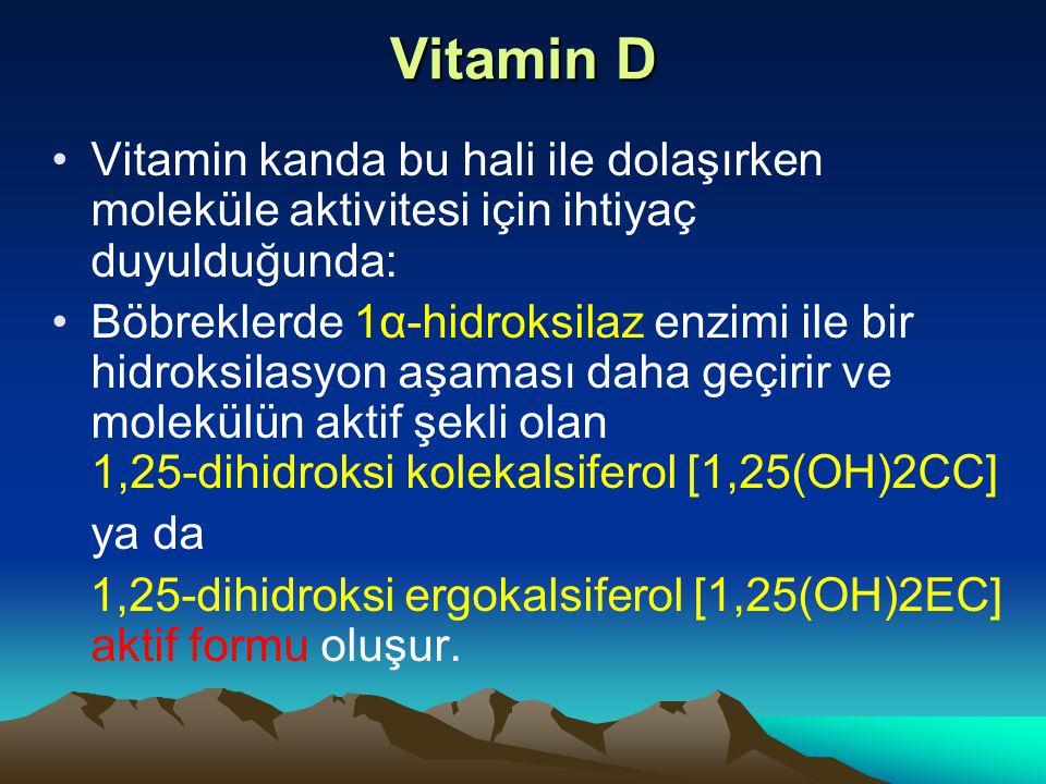 Vitamin D Vitamin kanda bu hali ile dolaşırken moleküle aktivitesi için ihtiyaç duyulduğunda: Böbreklerde 1α-hidroksilaz enzimi ile bir hidroksilasyon aşaması daha geçirir ve molekülün aktif şekli olan 1,25-dihidroksi kolekalsiferol [1,25(OH)2CC] ya da 1,25-dihidroksi ergokalsiferol [1,25(OH)2EC] aktif formu oluşur.