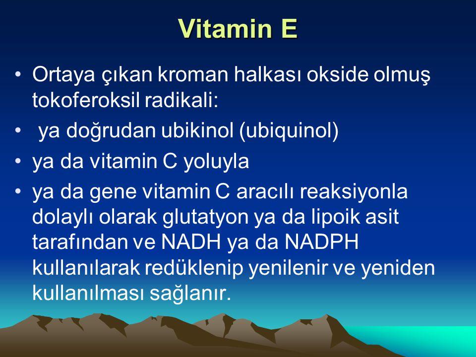 Vitamin E Ortaya çıkan kroman halkası okside olmuş tokoferoksil radikali: ya doğrudan ubikinol (ubiquinol) ya da vitamin C yoluyla ya da gene vitamin C aracılı reaksiyonla dolaylı olarak glutatyon ya da lipoik asit tarafından ve NADH ya da NADPH kullanılarak redüklenip yenilenir ve yeniden kullanılması sağlanır.