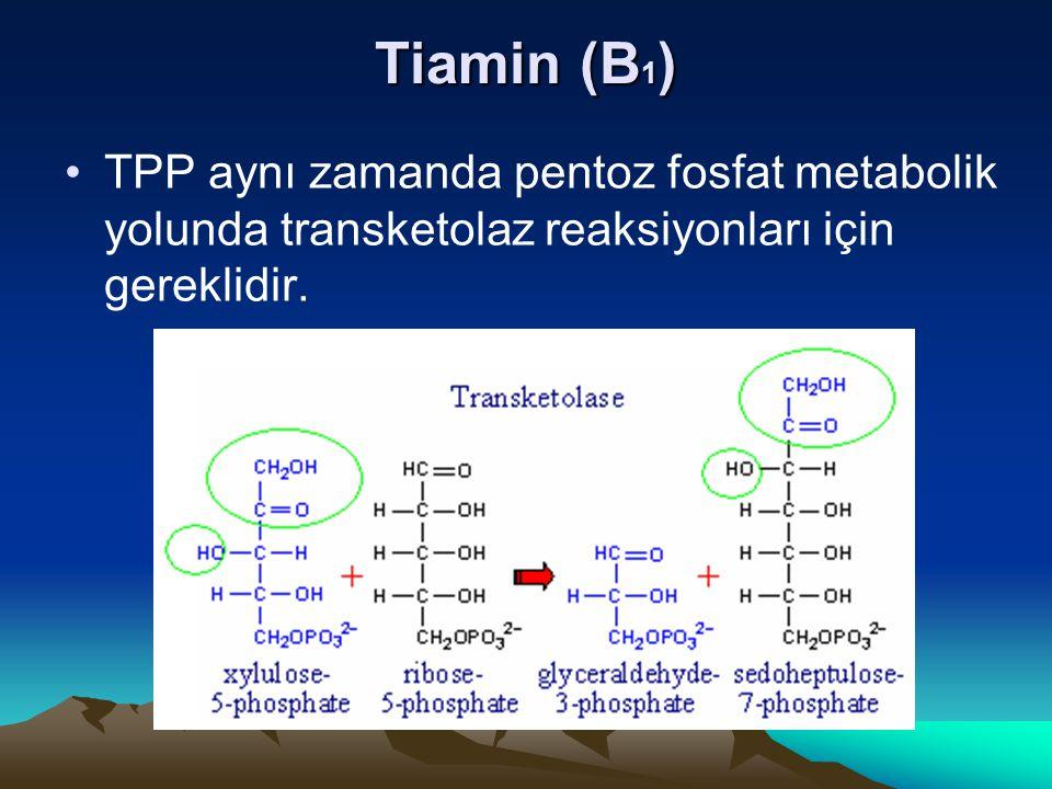Tiamin (B 1 ) TPP aynı zamanda pentoz fosfat metabolik yolunda transketolaz reaksiyonları için gereklidir.