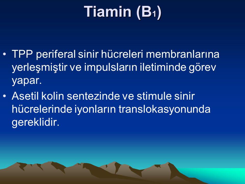 Tiamin (B 1 ) TPP periferal sinir hücreleri membranlarına yerleşmiştir ve impulsların iletiminde görev yapar.