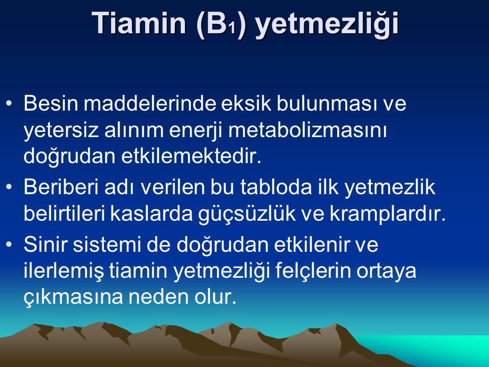 Tiamin (B 1 ) yetmezliği Besin maddelerinde eksik bulunması ve yetersiz alınım enerji metabolizmasını doğrudan etkilemektedir.
