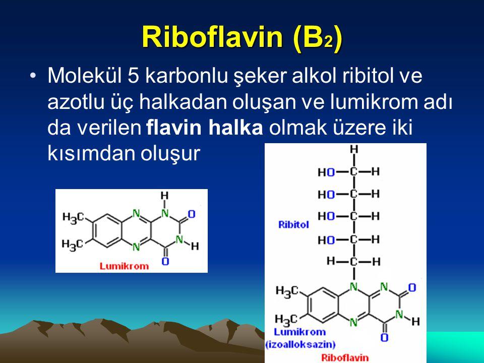 Riboflavin (B 2 ) Molekül 5 karbonlu şeker alkol ribitol ve azotlu üç halkadan oluşan ve lumikrom adı da verilen flavin halka olmak üzere iki kısımdan oluşur