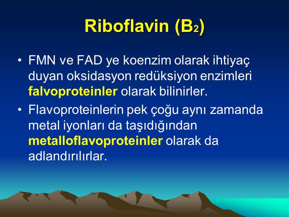 FMN ve FAD ye koenzim olarak ihtiyaç duyan oksidasyon redüksiyon enzimleri falvoproteinler olarak bilinirler.