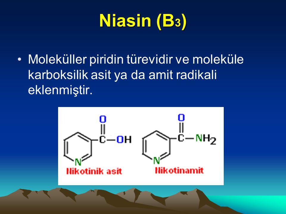 Niasin (B 3 ) Moleküller piridin türevidir ve moleküle karboksilik asit ya da amit radikali eklenmiştir.