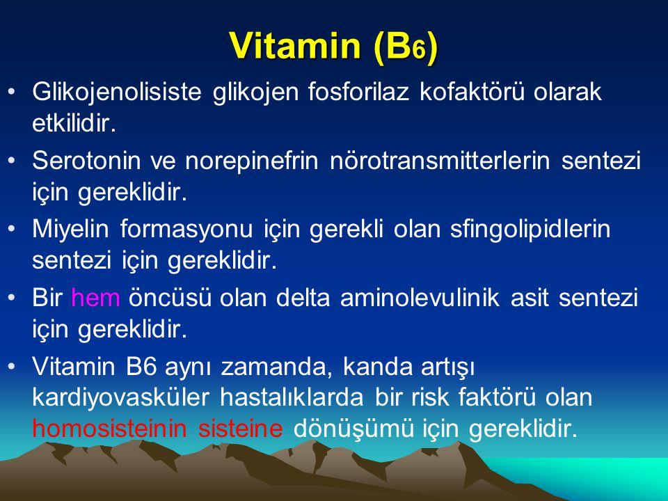Vitamin (B 6 ) Glikojenolisiste glikojen fosforilaz kofaktörü olarak etkilidir.