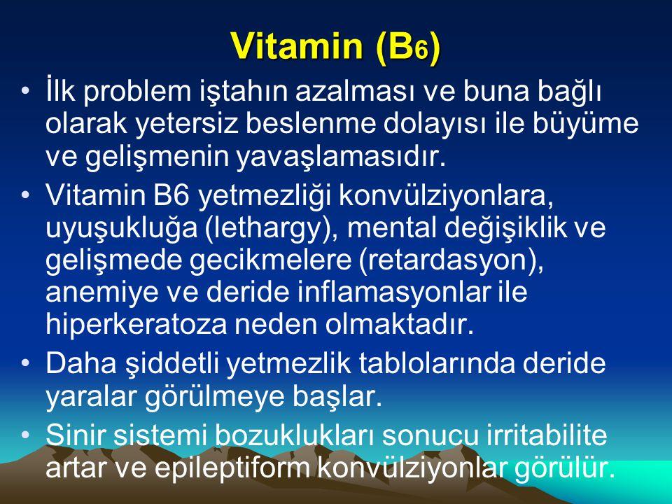 Vitamin (B 6 ) İlk problem iştahın azalması ve buna bağlı olarak yetersiz beslenme dolayısı ile büyüme ve gelişmenin yavaşlamasıdır.