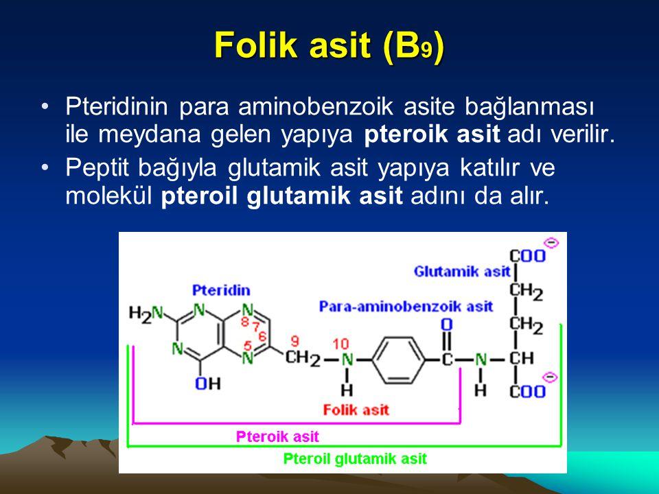 Folik asit (B 9 ) Pteridinin para aminobenzoik asite bağlanması ile meydana gelen yapıya pteroik asit adı verilir.
