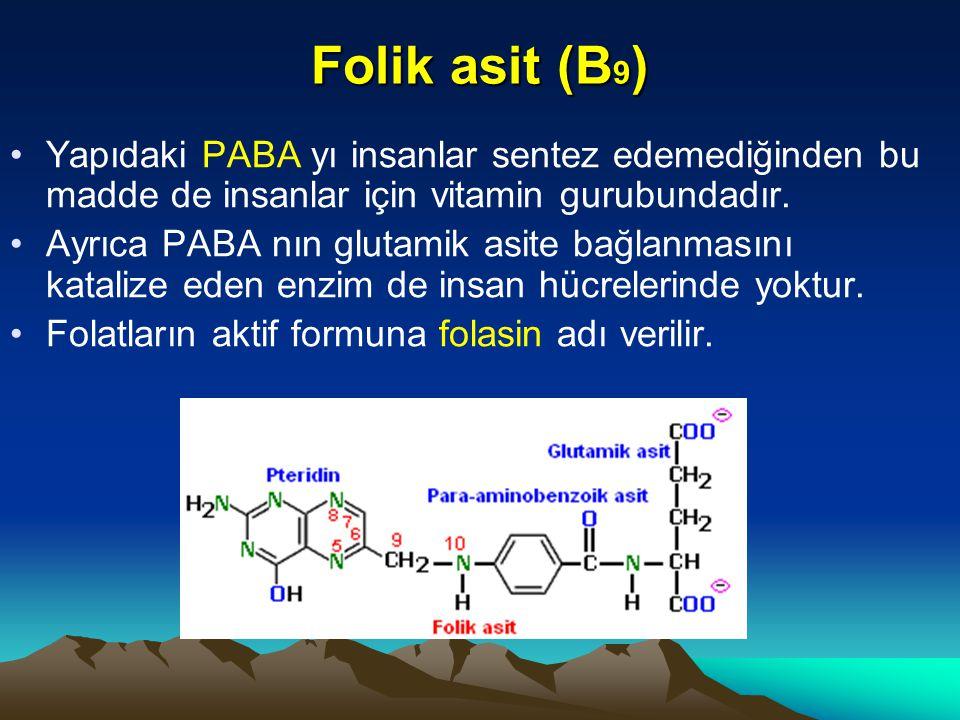 Folik asit (B 9 ) Yapıdaki PABA yı insanlar sentez edemediğinden bu madde de insanlar için vitamin gurubundadır.