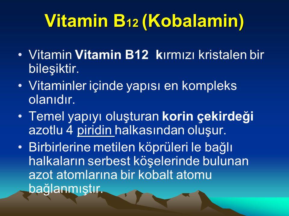 Vitamin B 12 (Kobalamin) Vitamin Vitamin B12 kırmızı kristalen bir bileşiktir.