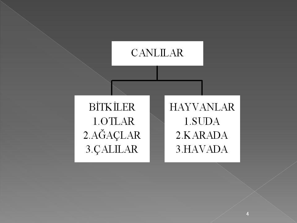 Taksonomi,sistematik sınıflandırmadır.İki şekilde yapılır.