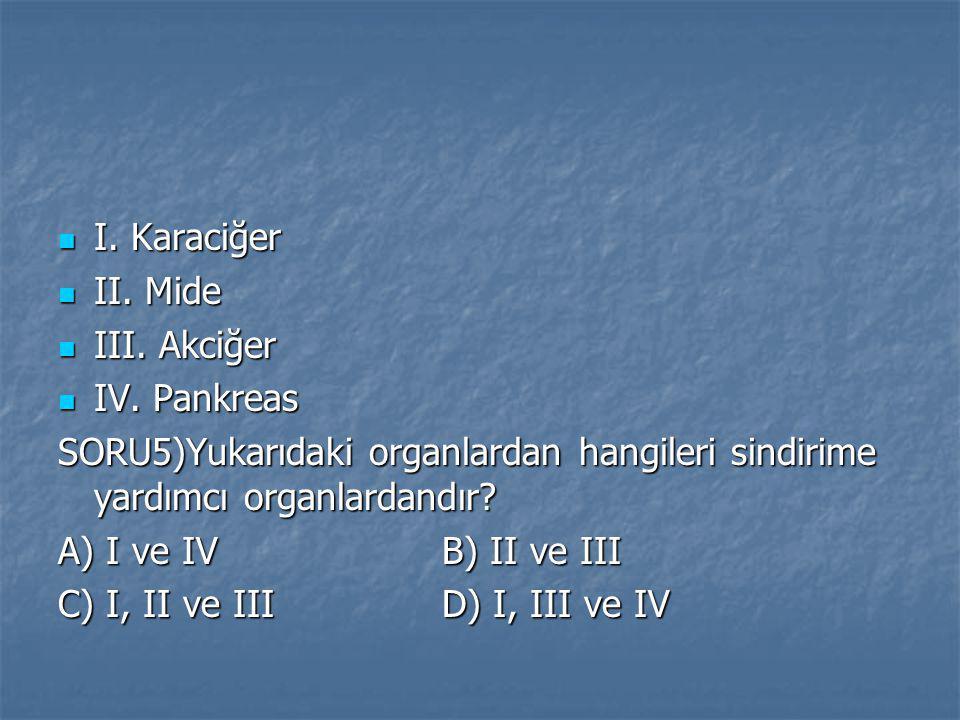 I. Karaciğer I. Karaciğer II. Mide II. Mide III. Akciğer III. Akciğer IV. Pankreas IV. Pankreas SORU5)Yukarıdaki organlardan hangileri sindirime yardı